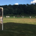 Girls Soccer vs. Saint Jean's - 9.16. photo album thumbnail 70